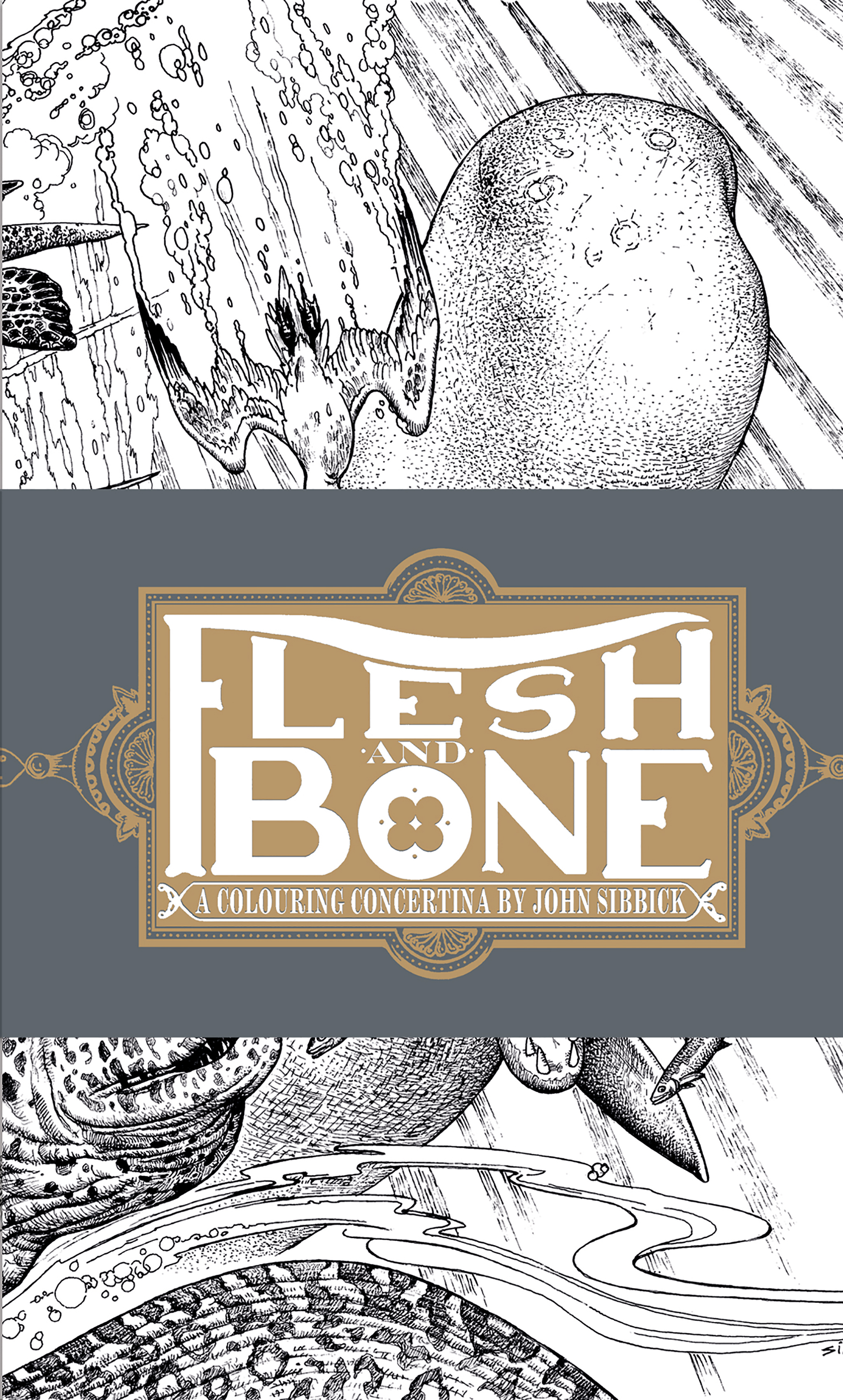 Flesh and Bones: A Colouring Concertina