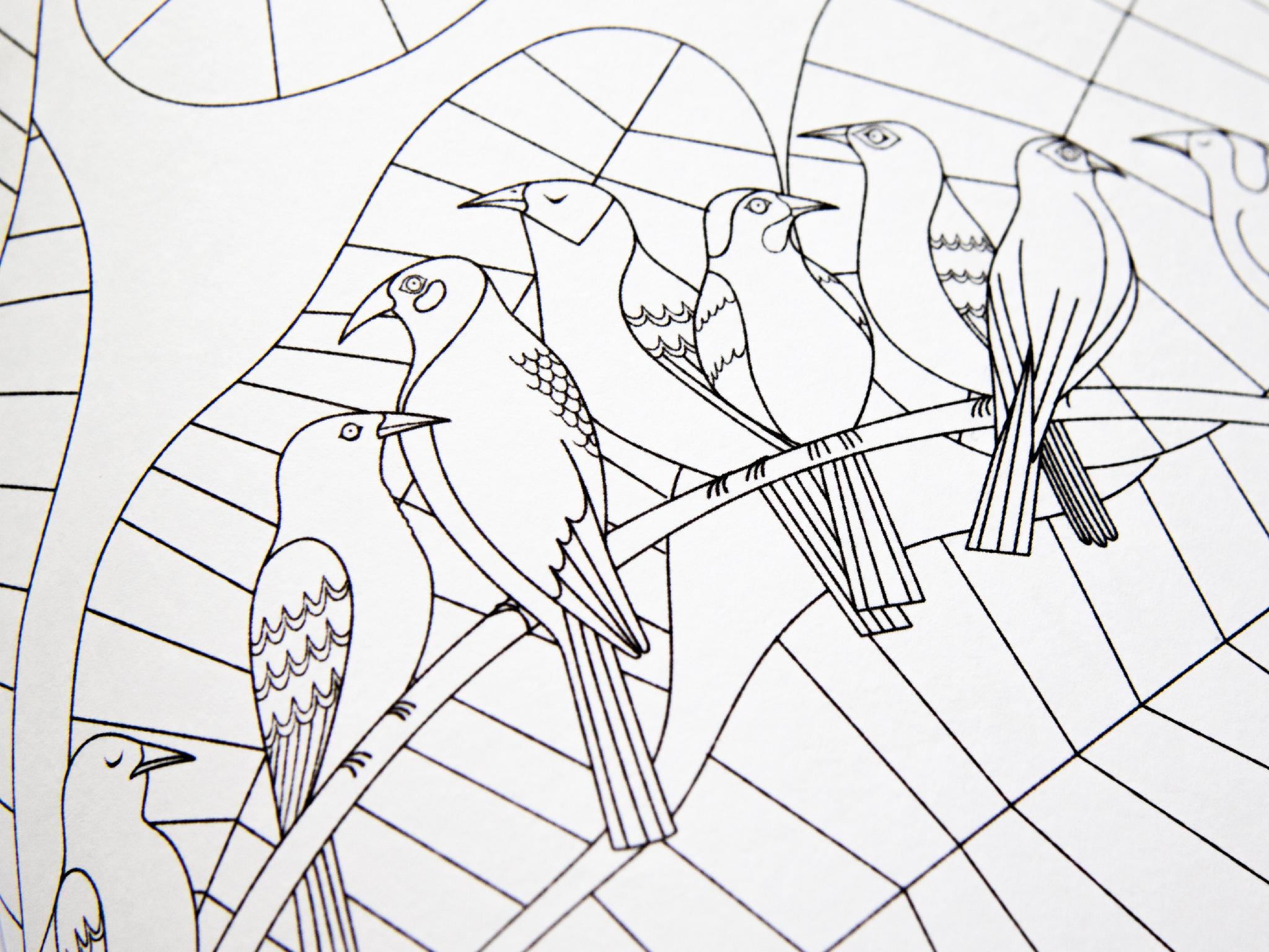 Nobrow Press | Beautiful Birds Colouring Book