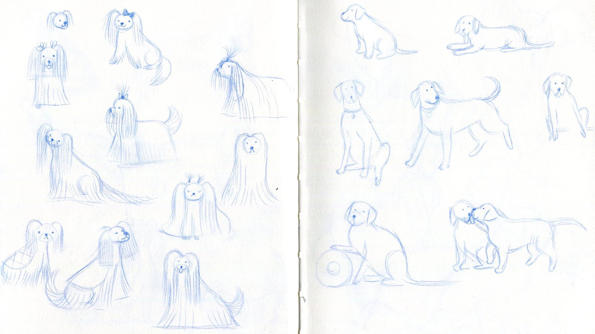 DogsSketches