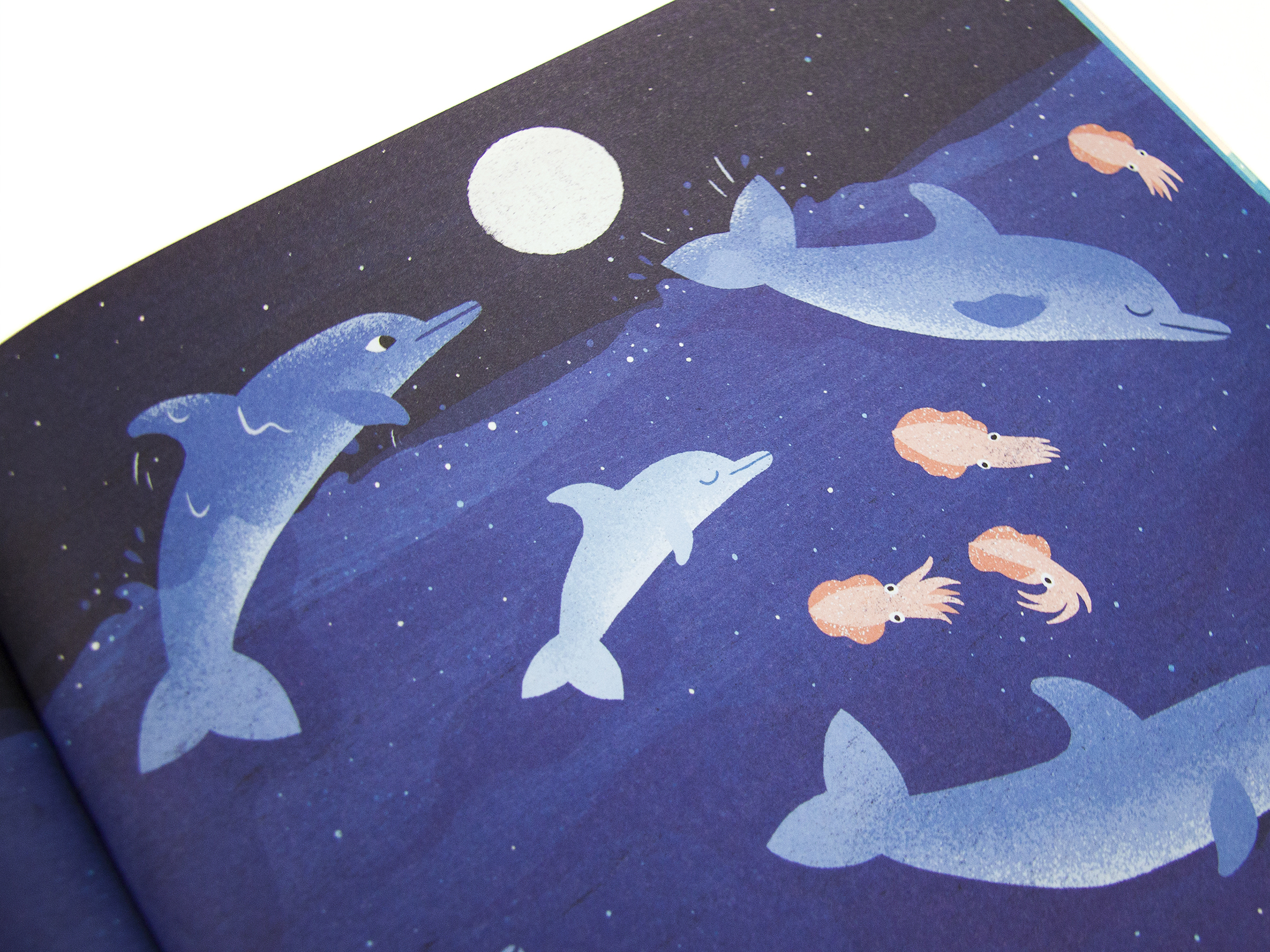nobrow press one day on our blue planet in the ocean
